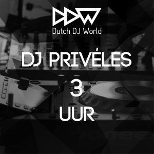 Dutch DJ World Privéles DJ 3 uur